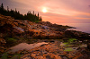 Joe's Guide to Acadia National Park