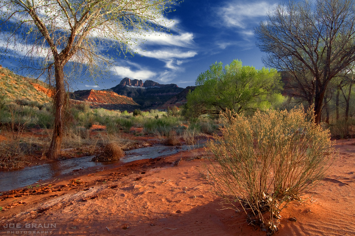 Coalpits Wash (Zion National Park) -- © 2010 Joe Braun Photography